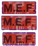 MEF types detail 300